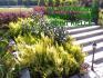 Projektowanie ogrodów Kielce, realizacja ogrodów,terenów zieleni,nawodnienia